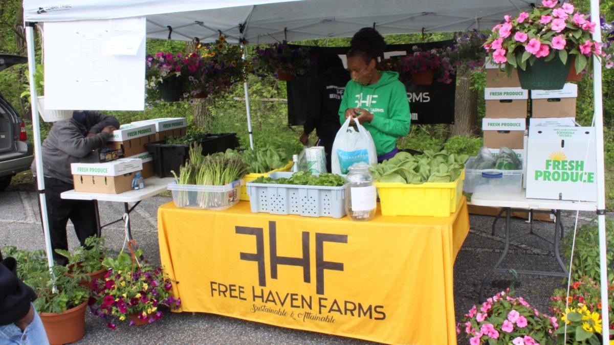 Free Haven Farms